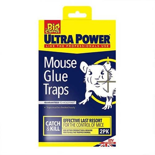 The Big Cheese Mouse Glue Traps – 2 Pack