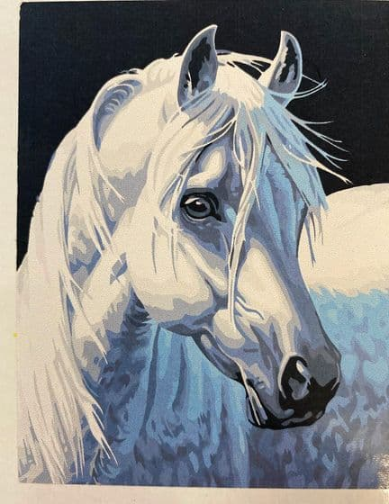 40 x 30 cm Canvas Board Oil Paint by Numbers Art Set Horse