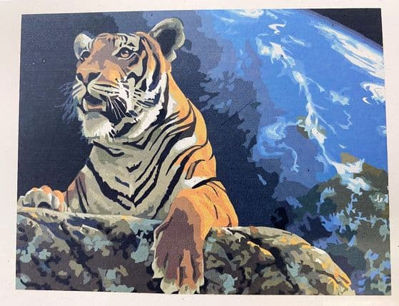 40 x 30 cm Canvas Board Oil Paint by Numbers Art Set Tiger