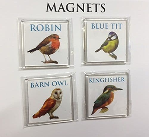 Set of 4 Kitchen Bird Magnets