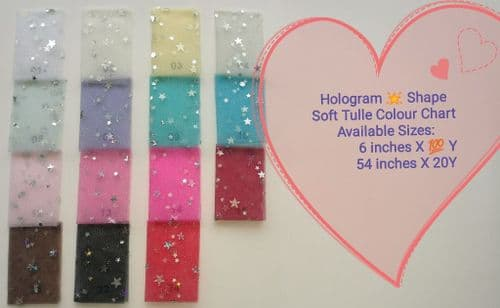 Hologram Star Sequin Tulle Color Chart