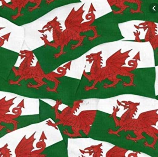 Nutex Welsh Dragon fabric 231 - 1 Metre