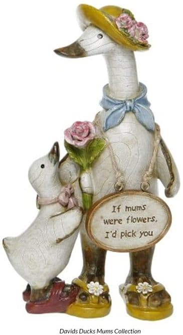 Special Mum Duck Ornament - IF MUMS WERE FLOWERS I'D PICK YOU