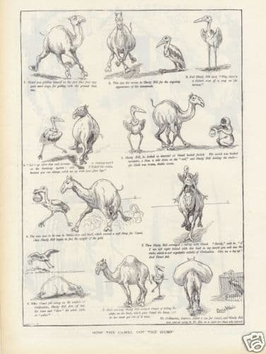 1893 Louis Wain THE CAMEL AND THE OSTRICH Anitque Victorian Print