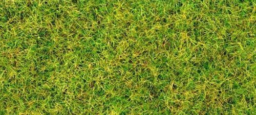 Gaugemaster GM170 Spring Green Flock/Static Grass (30g)