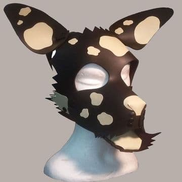 Puppy Hood with White Spots